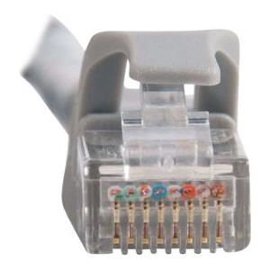 100FT Patch cable RJ-45 (M) - RJ-45 (M)
