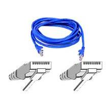 Belkin A3L98075BLUS 75FT Patch cable - RJ-45 (M) - RJ-45