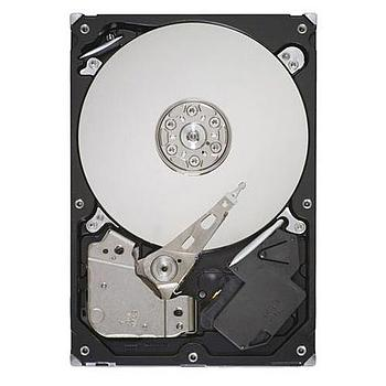 Seagate ST250DM000 Hard Drive 250G SATA-600 7200RPM 3.5in